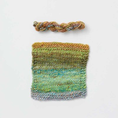Sample swatch and skein. Photo by George Boe.