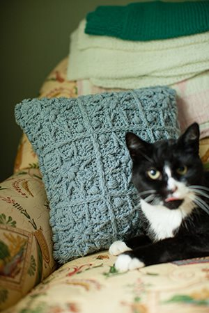 Starburst Pillow with Cat