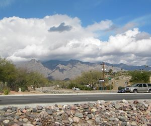 going to Tucson for the gem, jewelry, rock and mineral shows