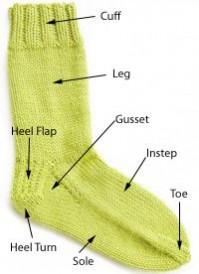 4885.sock_anatomy%20copy.jpg-550x0