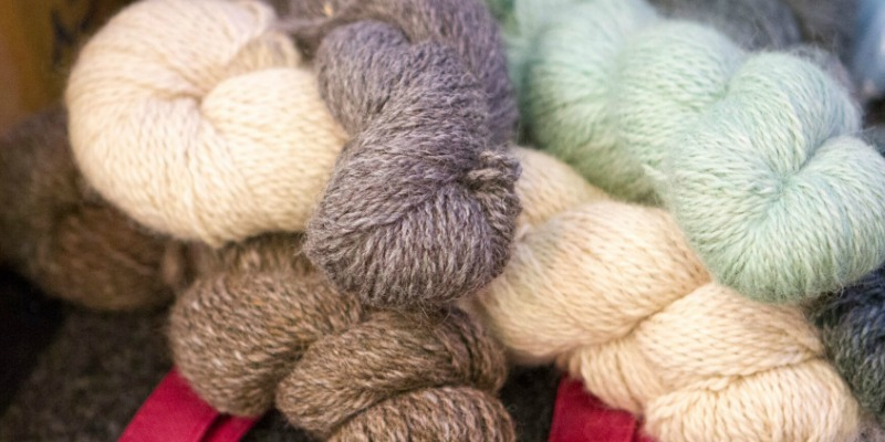 Natural Fiber Extravaganza in Tennessee