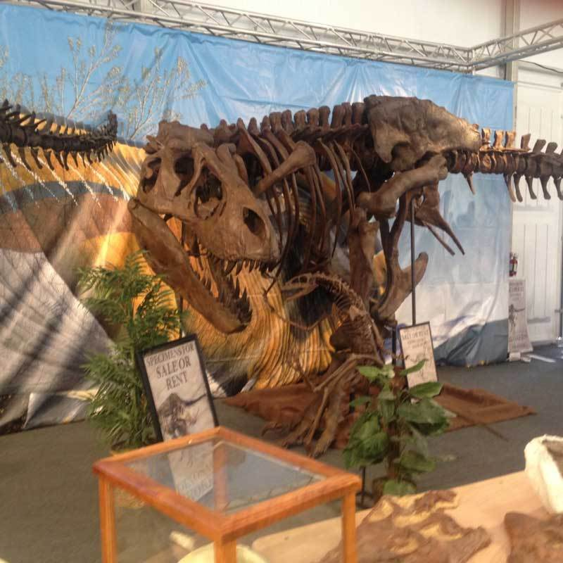 Dinosaur on display at the 22nd Street Gem & Mineral Show