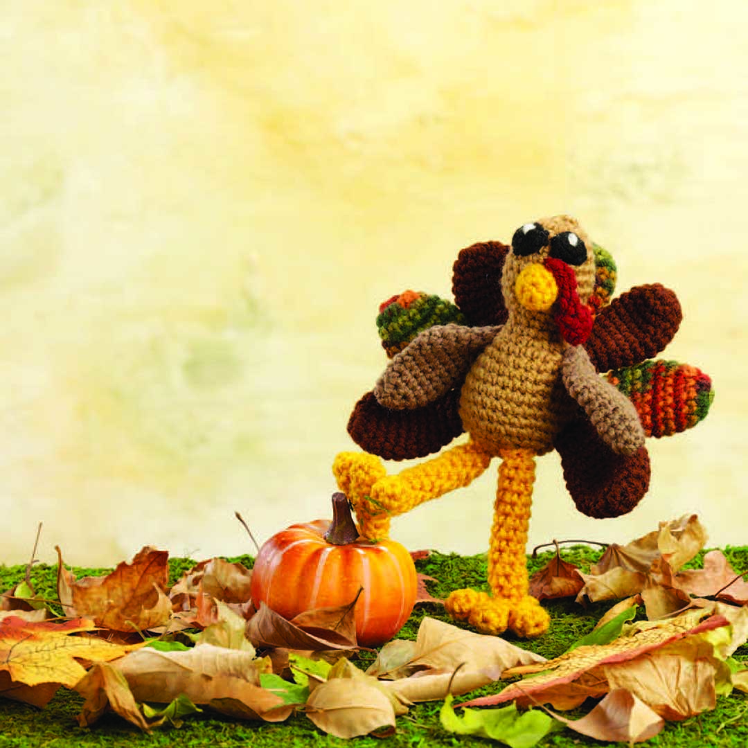 Crochet Amigurumi Terrence the Turkey   Photo Credit: Joe Coca