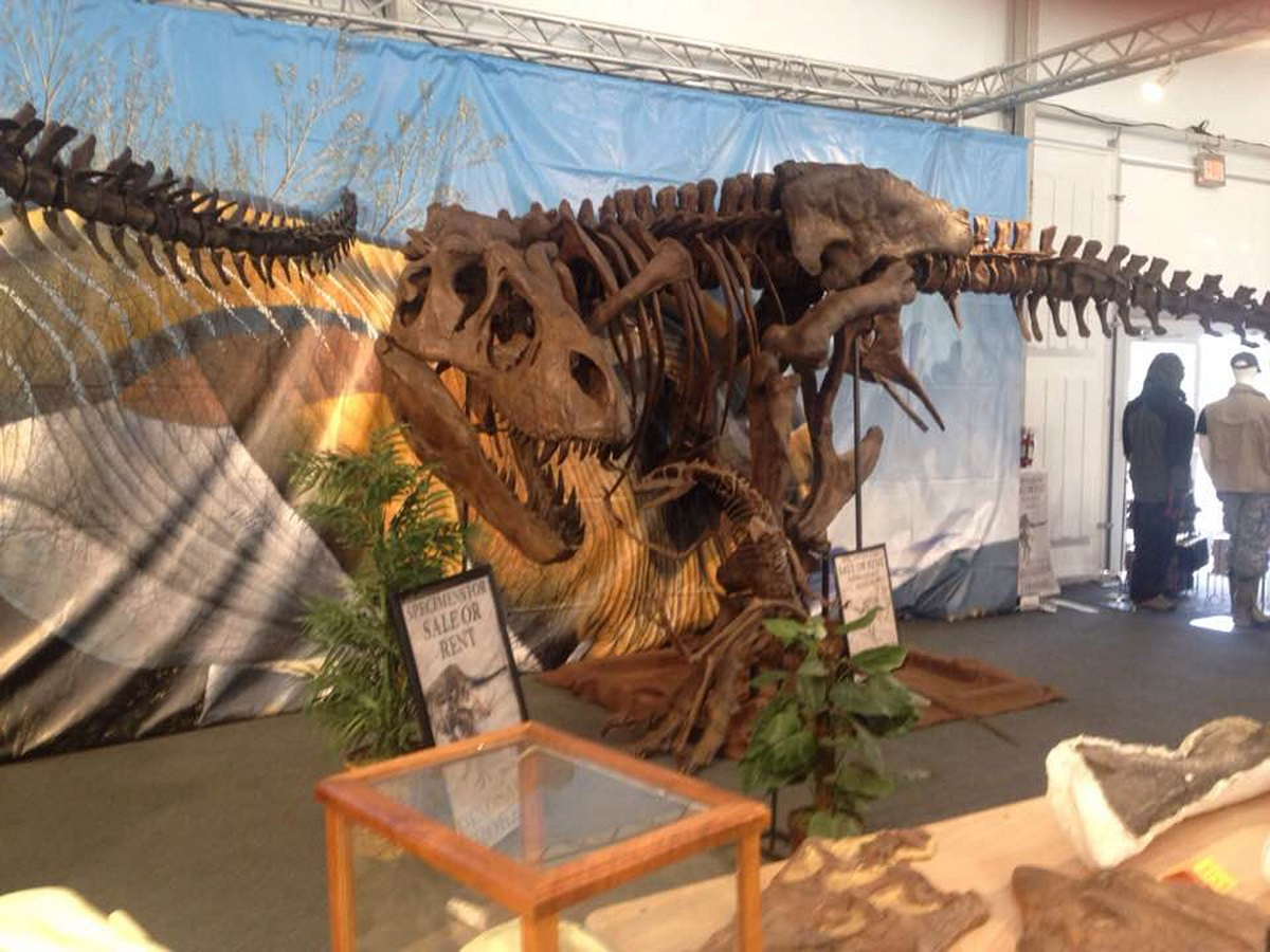 For the dinosaur lover, you'll find full-sized dino skeletons at the 22nd Street Show. PHOTO: KARLA ROSENBUSCH