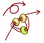 How to Stitch Corkscrew Tendrils, a bead weaving stitch and great addition to any design.