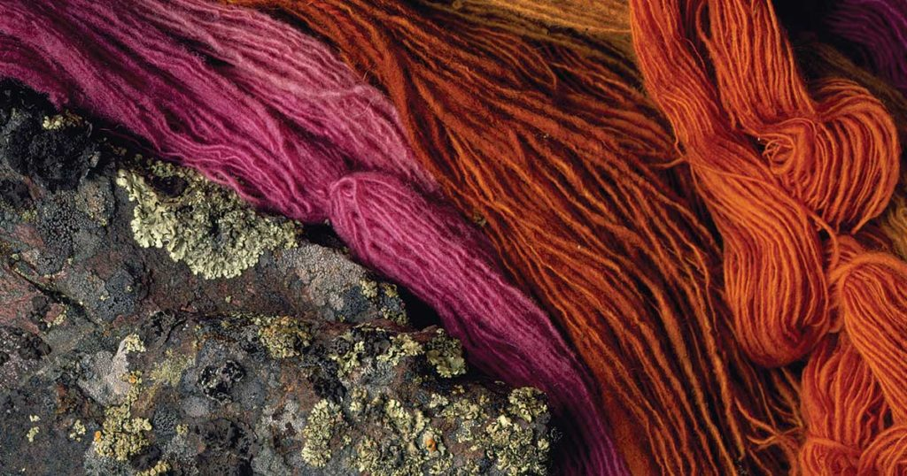 Follow Your Curiosity: Natural Fibers, Dyeing, and More with Linda Ligon