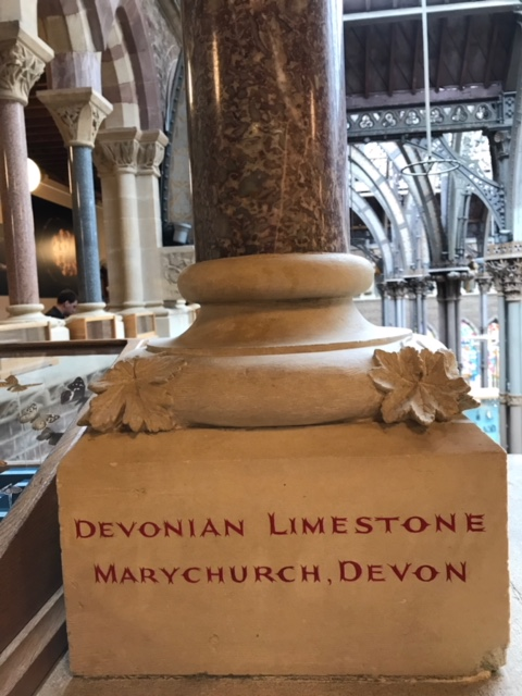 A carved pillar of Devonian limestone, one of many stone pillars on the mezzanine of the Oxford University Museum of Natural History. gemstones stone carving