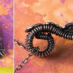 Wire Wrapping: Mastering the Basic Figure-Eight Weave