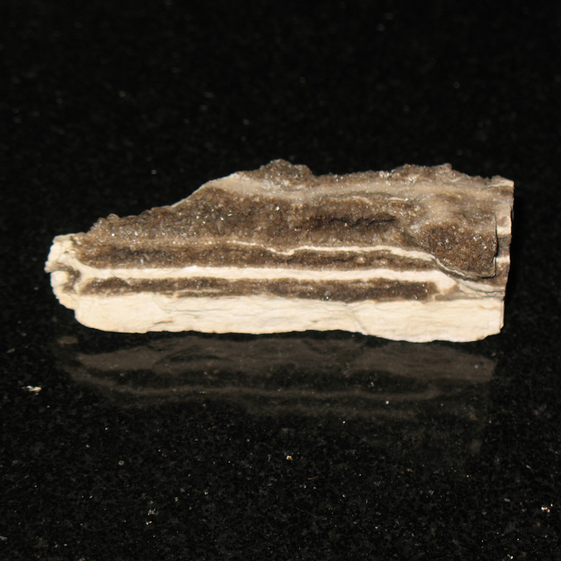 Alabama is home to quartz crystal encrusted petrified wood.