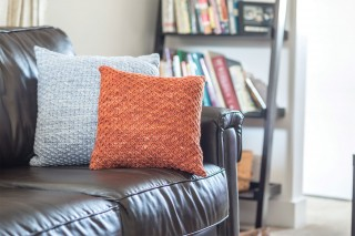 Rhodesian-and-Polar-Morn-Pillows