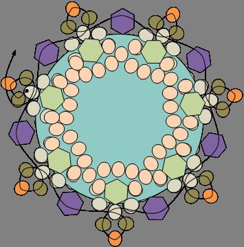 Sample Diagram Starburst