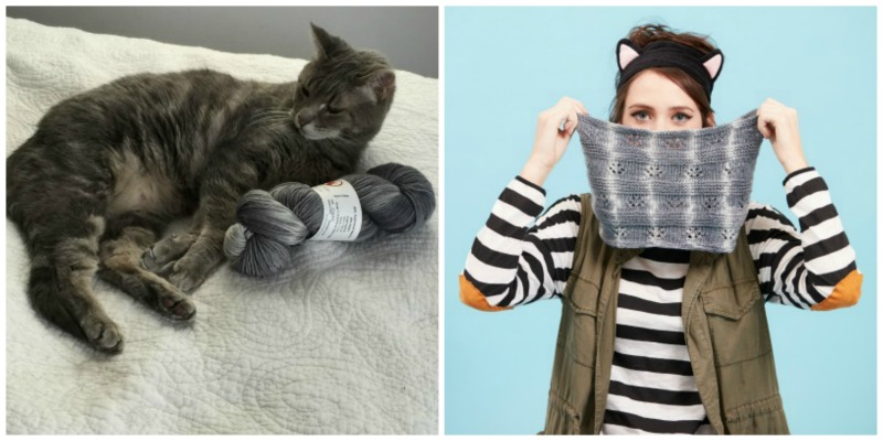 Show Your Cat Love with the Lovecats Kit!