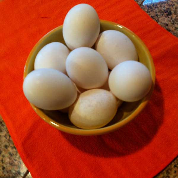 Use jumbo eggs when making Merle's famous eggnog.