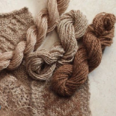 A Guide to Spinning Alpaca: Fiber from Huacaya Alpaca to Suri Alpaca (and beyond)