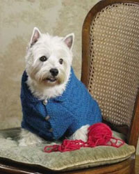 Knitting for Dogs: A Dog Sweater Pattern Example from Dogs in Knits.