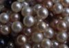 multicolor Akoya pearls by Tammy Jones