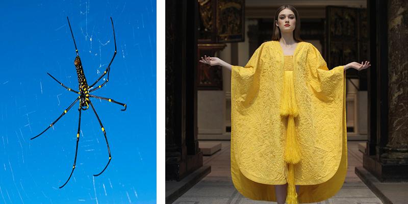 New Twists on Old Fibers: Spider Silk