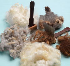 Learn about wool combing including tips for comb selection, fiber organization, combing techniques and overall safety in this free wool combing and carding ebook.
